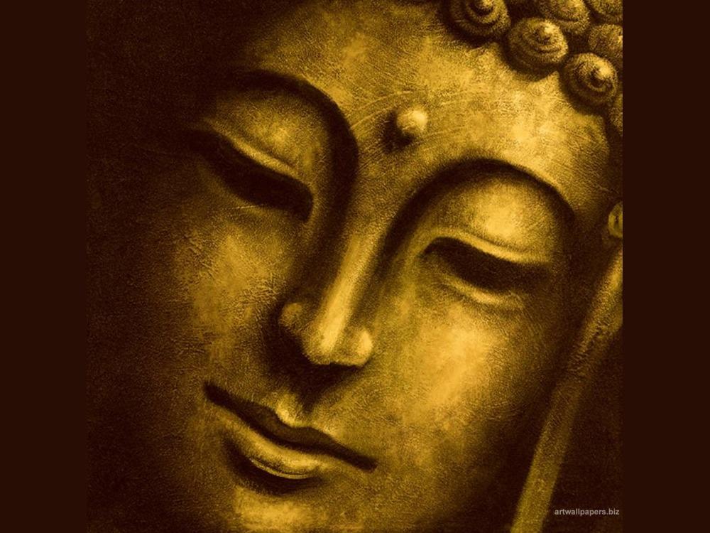 What the buddha...